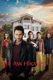 История одной любви (2013)